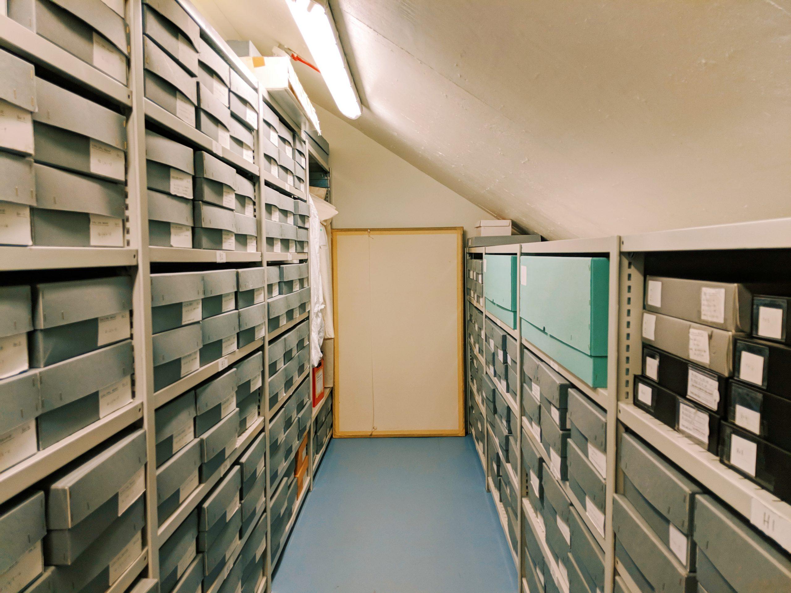 Roald Dahl Manuscript Archive