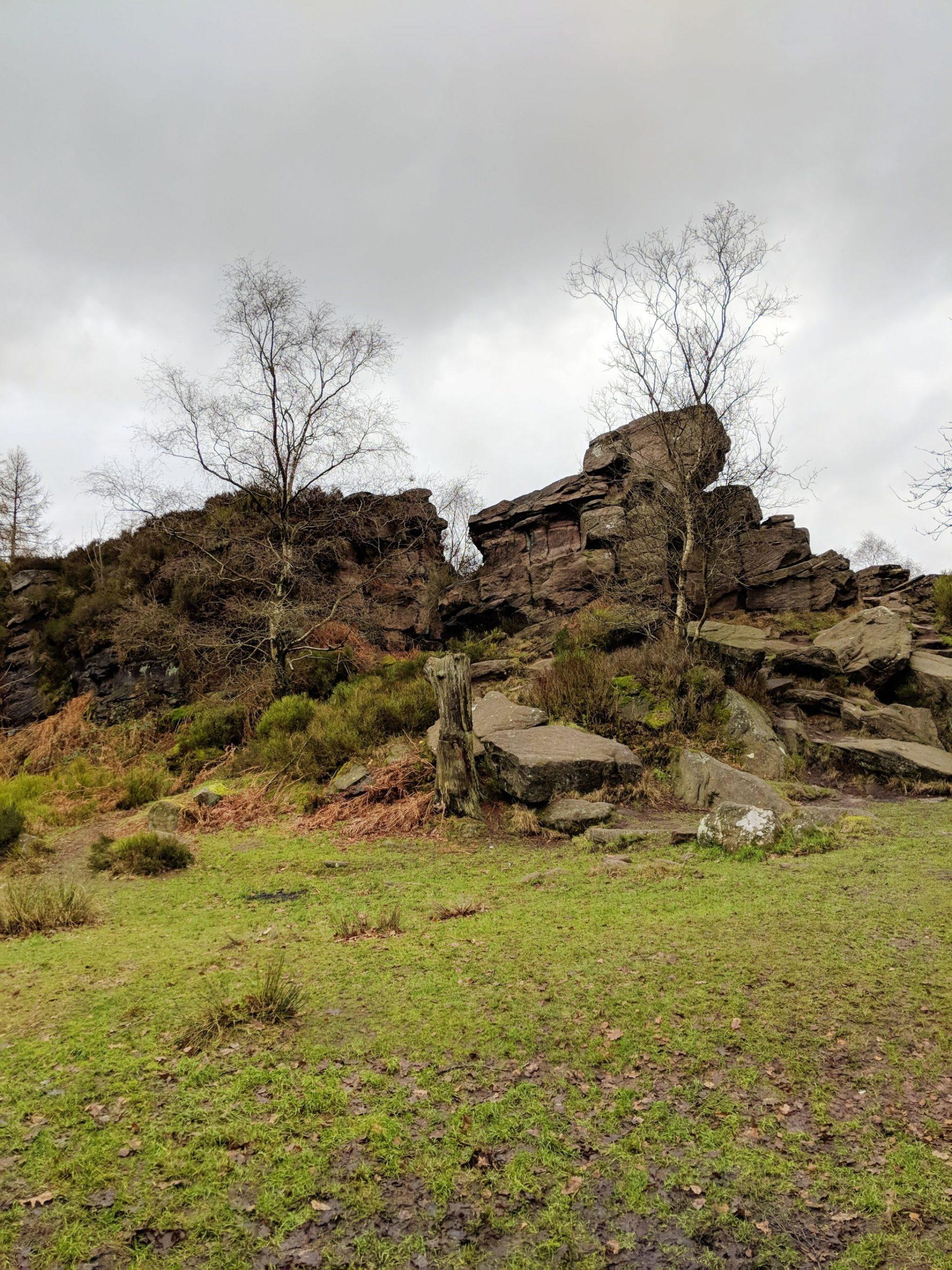 Gritstone rocks near Lud's Church, Staffordshire