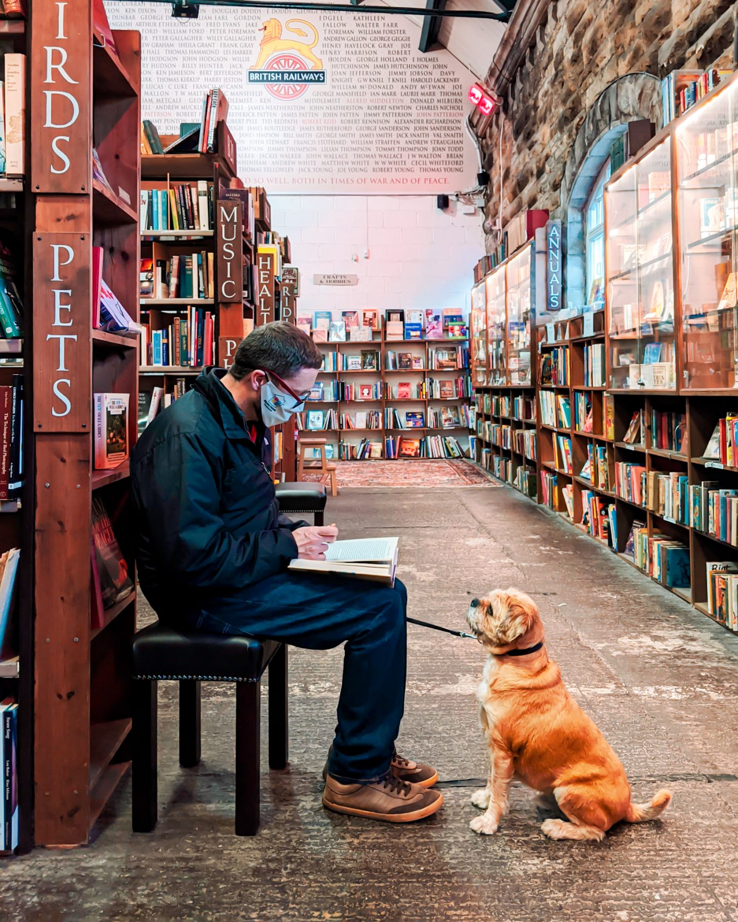 A man reading with a terrier looking at him by the pets book section at Barter Books Alnwick
